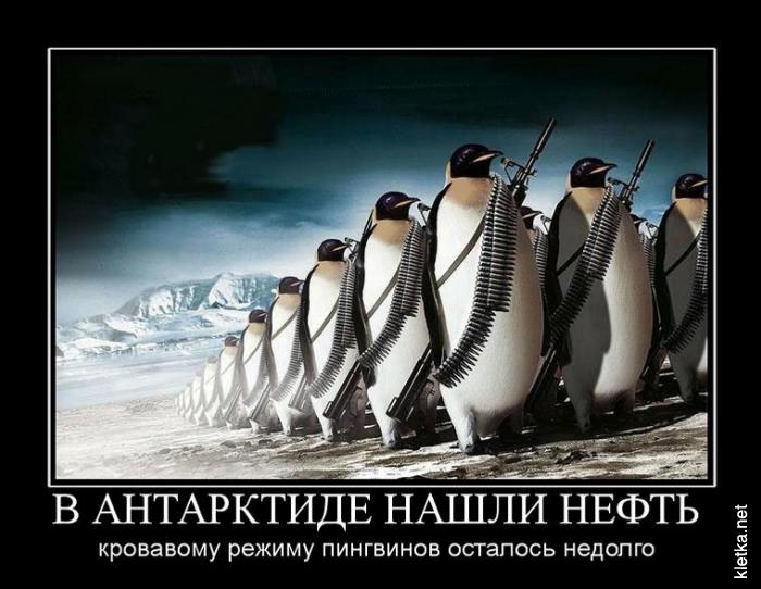 03_v-arktike-nashli-neft