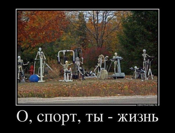 o-sport-ty-zhizn