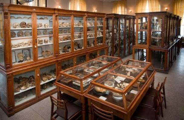 anatomicheskiji-muzeji