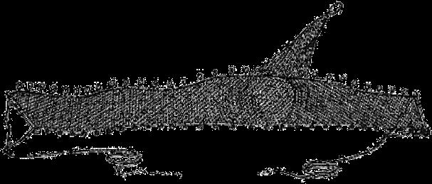 nevod-volok