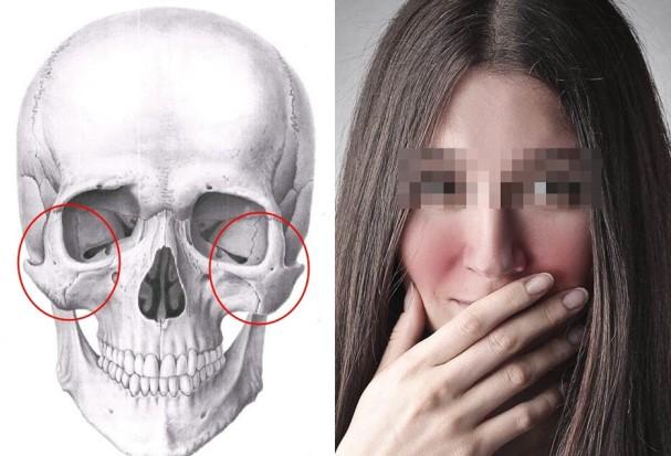 skulovaja-kost